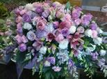 rosas-florist-ct277